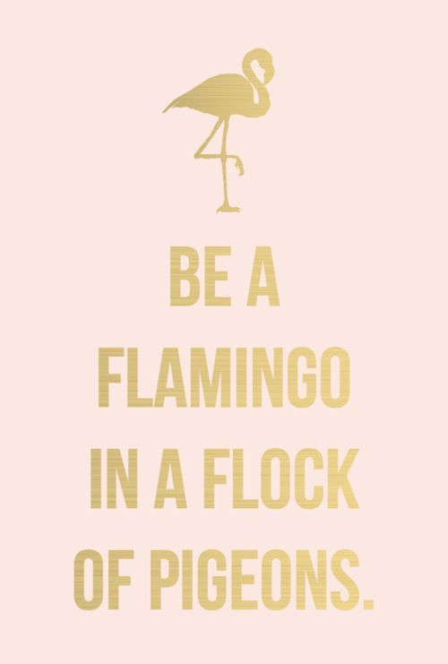 Quotes About Fashion : Get your dose of cute and inspiring ...