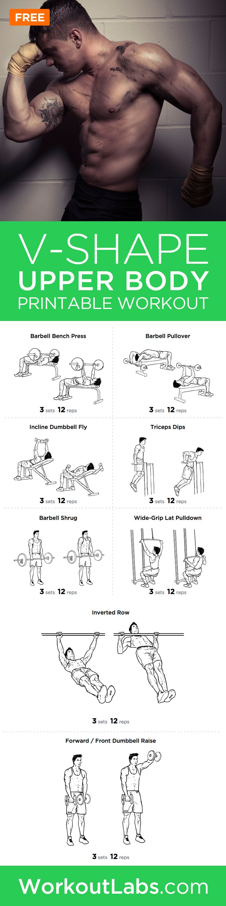 picture about Printable Workout Plans for Beginners named Yoga For Newbies Pointers : V-Form Higher Human body Printable