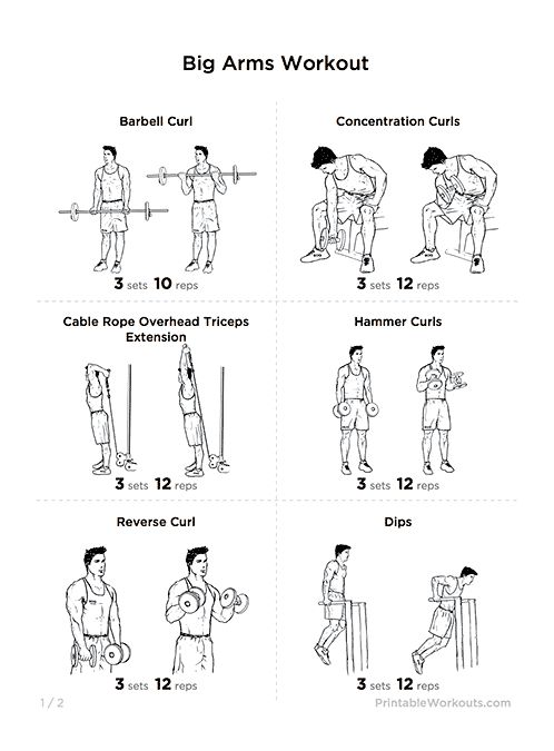 big biceps workout routine pdf