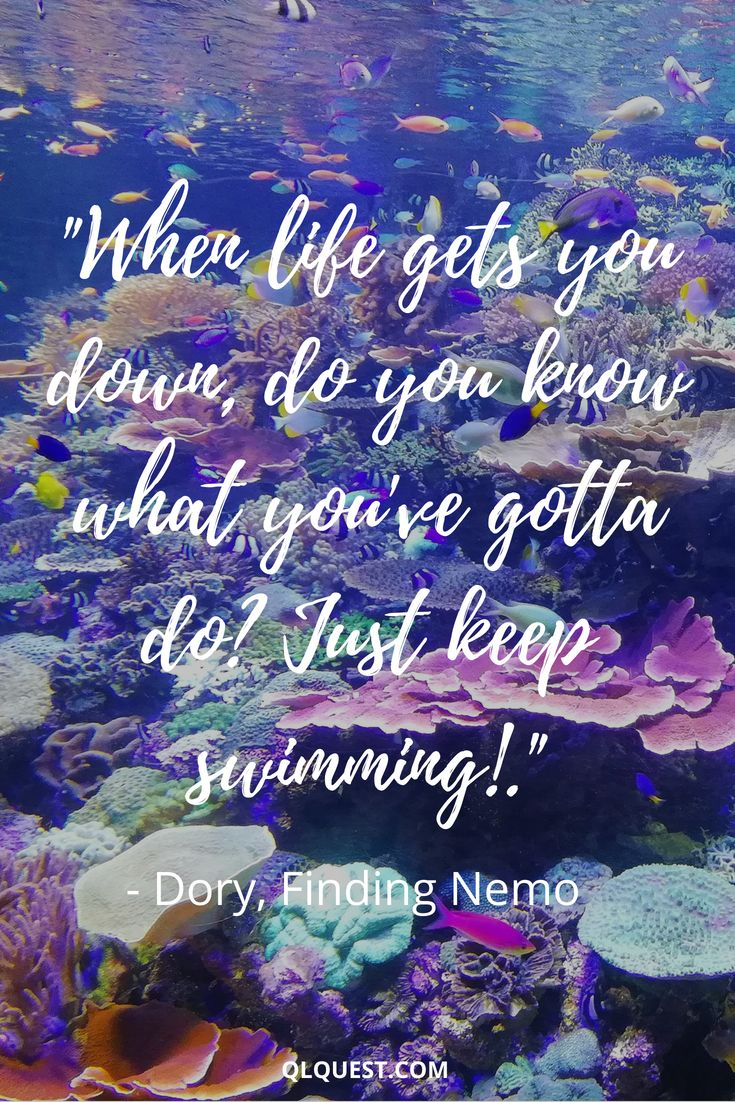 Quotes About Fashion : When life gets you down, do you know ...